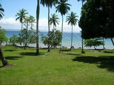 Coalicion Vende 220 Mil Mts2 Con Playa En Samana