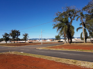 Lote Residencial - São José Dos Pinhais - Te0139 - Te0139 - 32933966