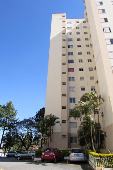 Apartamento No Mandaqui, 2 Quartos