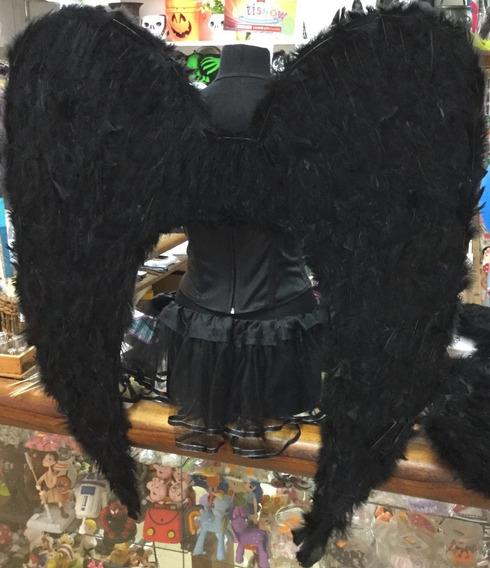 Alas De Ángel Negras De Plumas Maxigrandes