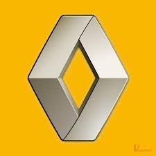 Reparacion Cajetin Direccion Renault Peugeot