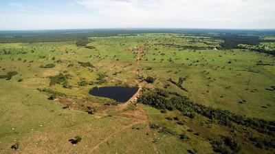 Fazenda 2877 Hectares No Tocantins - Fa0046