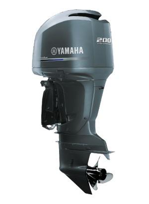 Mp Yamaha F-200 Fetl 4t 2020