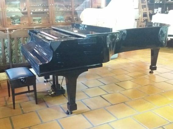 Piano - Grande Cauda Orquestral