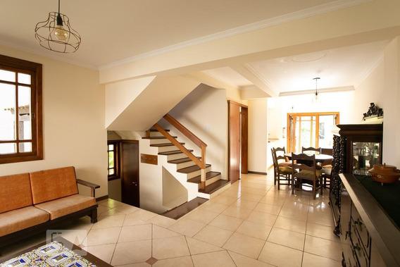Casa Para Aluguel - Tristeza, 3 Quartos, 168 - 893052763