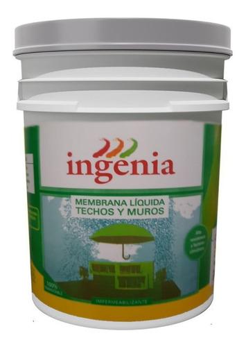 Imagen 1 de 5 de Membrana Liquida Pasta 20kg Impermeable Transitable Ingenia