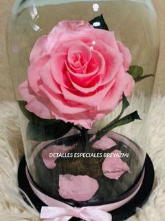 Rosa Eterna Mayoreo 5 Piezas 24 X 15 Cm