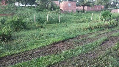 Terreno 200metros Quadrados Quitado Em Olinda Pernambuco .