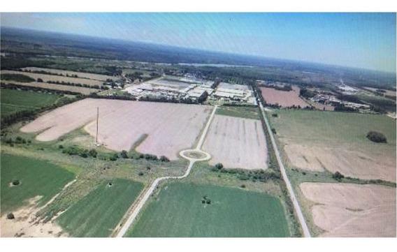 Terreno En Parque Industrial Y Logistico 10000mts