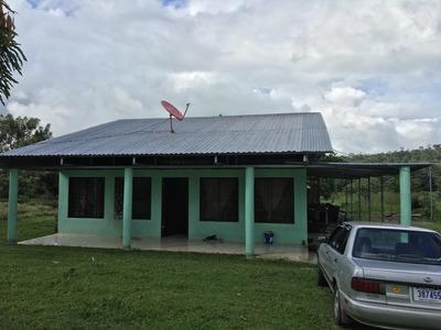 Propiedad Con Casa En Santa Rosa De La Palmera,san Carlos Cr