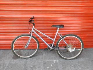 Bicicleta Rodado 26 Paseo Dama Pinky