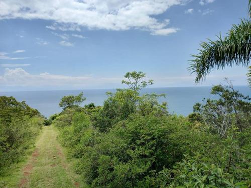 Terreno Para Venda Em Garopaba, Praia Da Ferrugem - 929_2-1121159