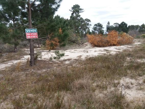 Terreno En San Luis Al Sur. 300 M2