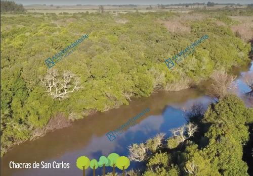 Chacras De San Carlos - Chacra 11