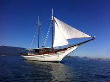 Embarcação Escuna Passeio Executivo