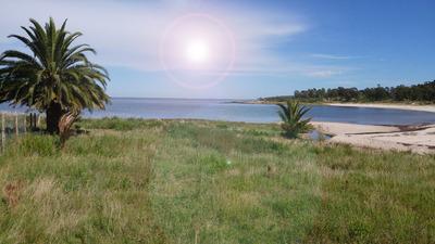 La Baguala: Chacra De 3 Hás, Con Playa Sobre Río De La Plata