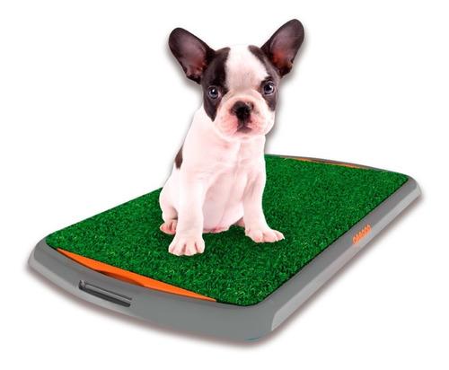 Bandeja Sanitaria Para Perro Peepoo
