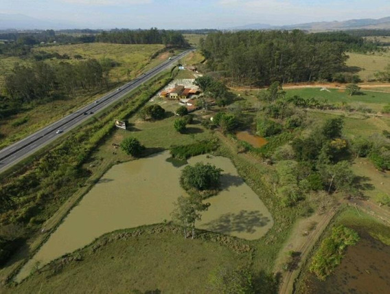 Terreno Em Borba, Pindamonhangaba/sp De 0m² Para Locação R$ 10.000,00/mes - Te512140