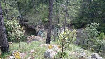 Terreno En Venta Para Ecoturismo En Sierra De Durango