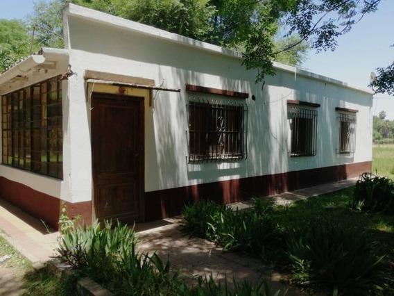 Casa Sencilla - Terreno Grande Con Arboleda - Cañuelas