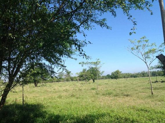 Rancho Ganadero En Venta
