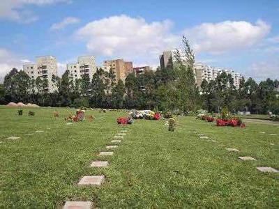 Jazigo Cemitério Do Morumbi