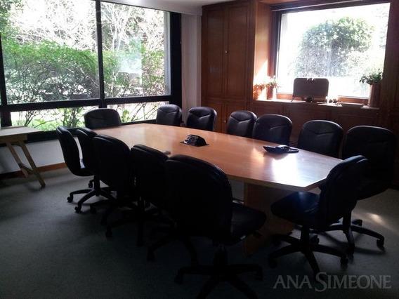 Excelente Módulo De Oficinas De 4500 M2.