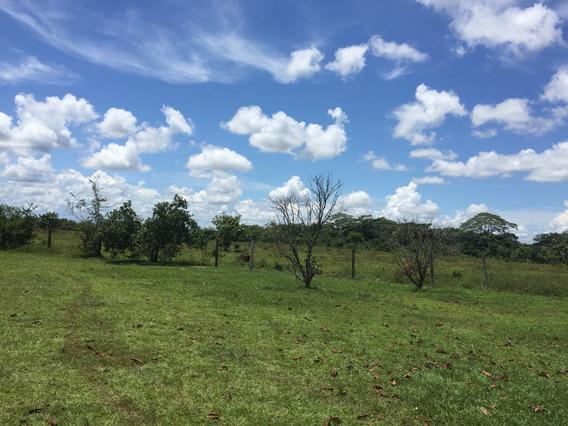 Vendo Terreno A 60 Km De Villavicencio