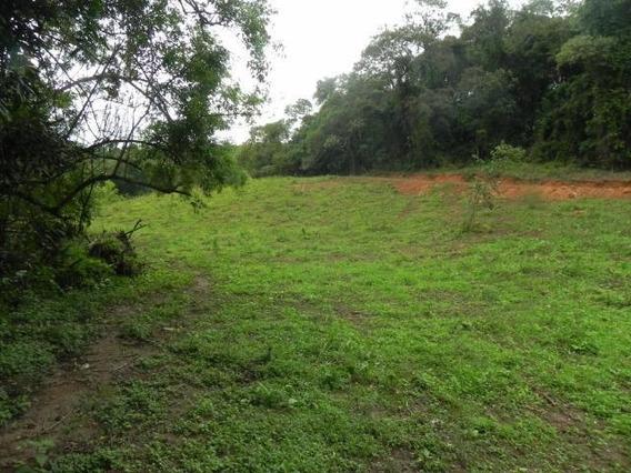 Vendo Terreno Em Ibiúna Demarcados E 90% Plaino L.