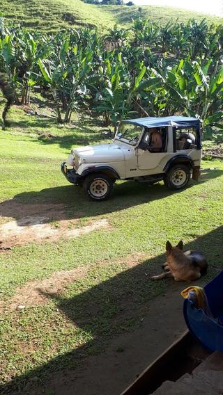 Jeep Cj Cj5 Color Beys