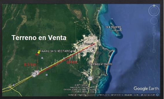 Terreno En Venta De 34.5 Has. Yaaxil, Carret: Francisco May, Cancún, Benito Juárez
