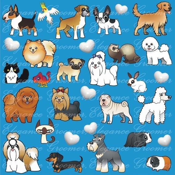 Jaleco Groomer Mix Pets