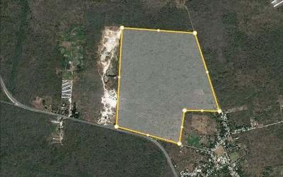 Venta De Terreno En Zona De Desarrollo Industrial, Yucatán