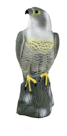 Jardín Artificial Águila Aves Señuelo Halcón Modelo Simulaci