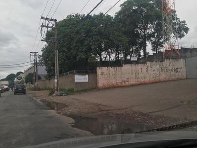 Excelente Área Na Beira Da Rodovia Presidente Dutra - Ar0065