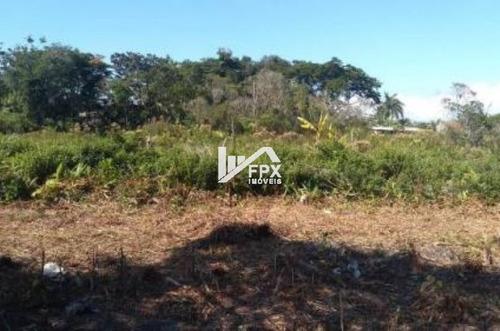 Imagem 1 de 6 de Ótimo Terreno Lado Serra Em Itanhaém - Ter063