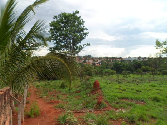 Área Para Alugar, 30706 M² Por R$ 6.000/mês - Chácara São Pedro - Aparecida De Goiânia/go - Ar0065