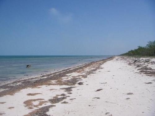 Terrenos En Venta En La Bahía De Champotón, Campeche.