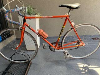 Bicicleta Team Raleigh Europa
