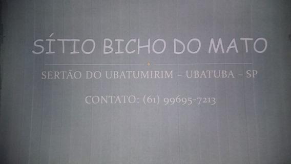 Sítio Bicho Do Mato (mata Atlântica)