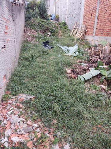 Verde Vida Jardinagem. Manutenção De Jardins,poda De Árvores