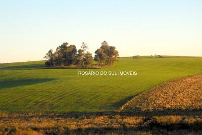 Fazenda Com 513 Hectares Em Rosário Do Sul - Rs