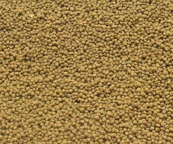 Ração Tilapias Peixe Crescimento E Engorda Nutri 10kg