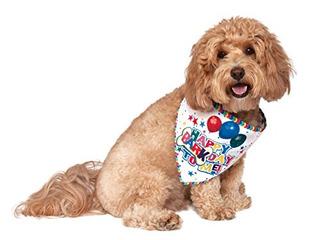 Rubies Its My Bark Reversible Pet Bandana