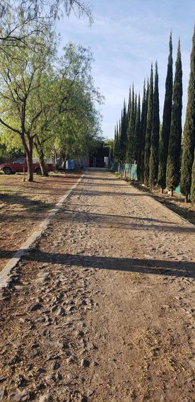 Terreno Céntrico Y Con Uso De Suelo Habitacional.