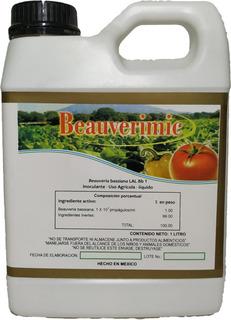 Plaguicida Insecticida Biológico Agrícola Frutícola Forestal Hongo Entomopatógeno Beauveria Bassiana Orgánico Natural