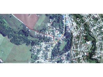 Fundo Vistoso, Osorno; Remate 26 Octubre