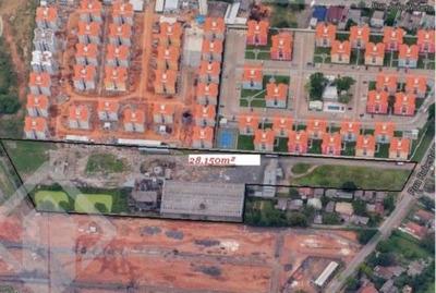 Terreno - Mato Grande - Ref: 126571 - V-126571