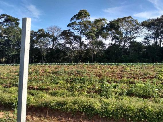 Terrenos Com Area Verde 600 M2 Agua E Luz 100% Plano J