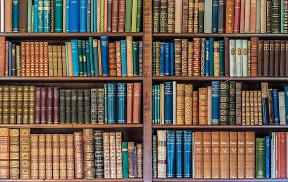 Fundo Fotográfico Tecido Para Live Biblioteca 2,20m X 1,50m
